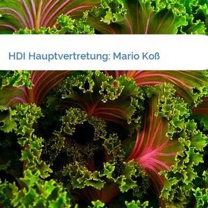 Bild HDI Hauptvertretung: Mario Koß mittel