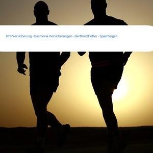 Bild Kfz-Versicherung - Barmenia Versicherungen - Berthold Höfler - Spaichingen mittel