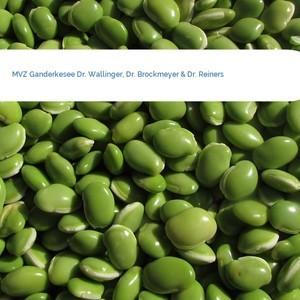 Bild MVZ Ganderkesee Dr. Wallinger, Dr. Brockmeyer & Dr. Reiners mittel