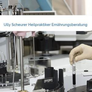 Bild Ully Scheurer Heilpraktiker Ernährungsberatung mittel