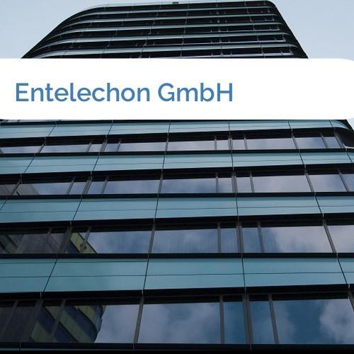 Bild Entelechon GmbH