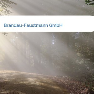 Bild Brandau-Faustmann GmbH mittel