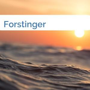 Bild Forstinger mittel