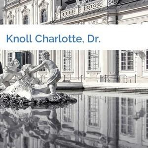 Bild Knoll Charlotte, Dr. mittel