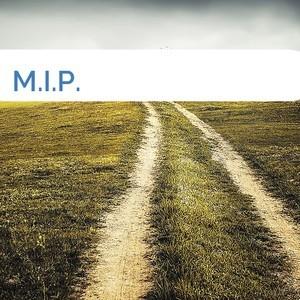 Bild M.I.P. mittel