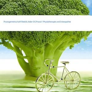 Bild Praxisgemeinschaft Riedl & Adler OG Praxis f. Physiotherapie und Osteopathie mittel