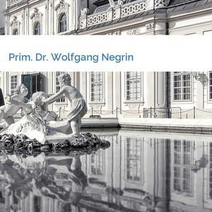 Bild Prim. Dr. Wolfgang Negrin mittel