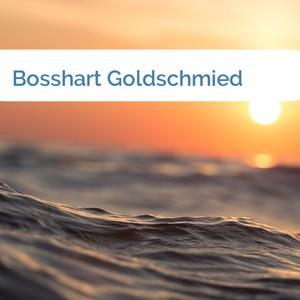 Bild Bosshart Goldschmied mittel