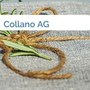 Bild Collano AG mittel