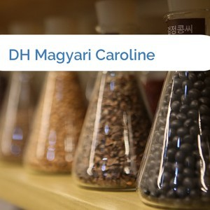 Bild DH Magyari Caroline mittel