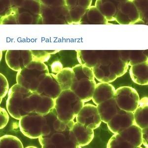 Bild Dr. Gabor  Pal Zahnarzt mittel