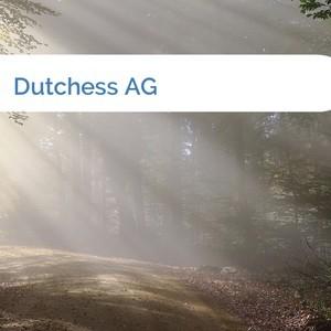 Bild Dutchess AG mittel