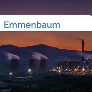 Bild Emmenbaum mittel