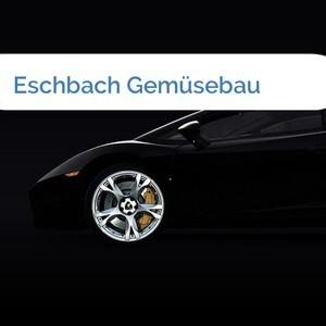 Bild Eschbach Gemüsebau mittel