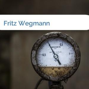 Bild Fritz Wegmann mittel