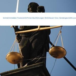 Bild Schmid Immobilien-Treuhand AG Firmen-Buchführungen, Wohnhäuser-Verw., Handelsgeschäfte usw mittel