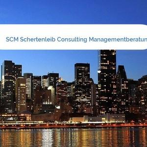 Bild SCM Schertenleib Consulting Managementberatung AG mittel
