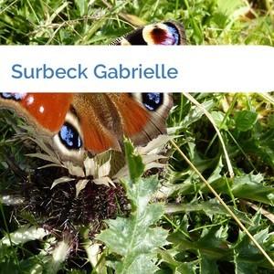 Bild Surbeck Gabrielle mittel